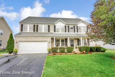 Joliet Single Family Home For Sale: 1017 Foxview Drive