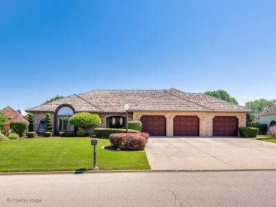 Homer Glen Single Family Home Contingent: 16847 Comandra Circle
