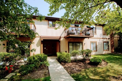 Roselle Condo/Townhouse For Sale: 1095 Prescott Drive #2C