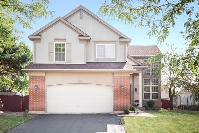 Bartlett Single Family Home For Sale: 1331 Geneva Lane