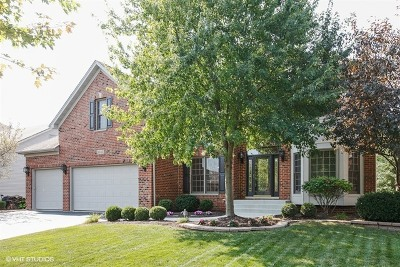 Naperville Single Family Home For Sale: 3535 Sweet Maggie Lane