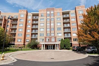 La Grange Condo/Townhouse Price Change: 1 North Beacon Place #312