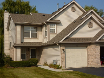 Schaumburg Condo/Townhouse For Sale: 1782 Nature Court