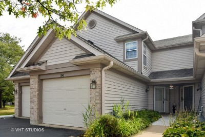 Schaumburg Condo/Townhouse For Sale: 1945 Lilac Court
