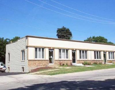 Elgin Commercial For Sale: 194 South Edison Avenue