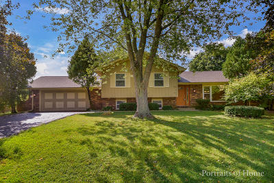 Naperville Single Family Home Contingent: 29w303 Mark Drive