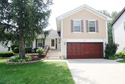 Schaumburg Single Family Home For Sale: 209 Kingsport Drive