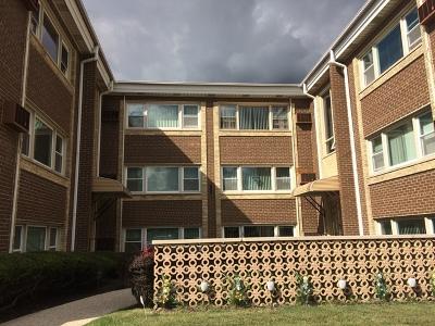 North Riverside Condo/Townhouse For Sale: 2257 Des Plaines Avenue #3SW