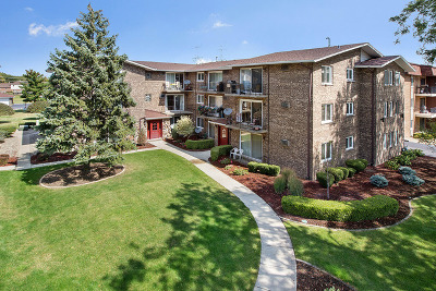 Orland Park Condo/Townhouse Contingent: 8932 West 140th Street #2B