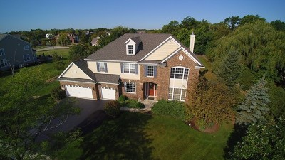 Lake Zurich Single Family Home Contingent: 625 Orchard Pond Drive