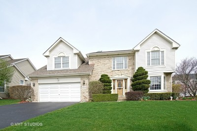 Hoffman Estates Single Family Home For Sale: 5232 Galloway Drive
