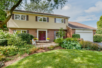 Naperville Single Family Home For Sale: 659 Cavalcade Circle