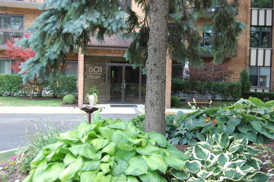 Willowbrook Condo/Townhouse For Sale: 601 Lake Hinsdale Drive #206