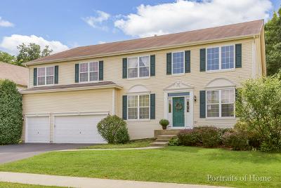 Bolingbrook Single Family Home For Sale: 825 Hartford Lane