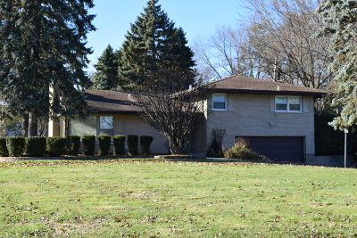 Schaumburg Single Family Home For Sale: 418 Pleasant Drive