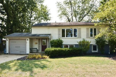 Orland Park Single Family Home For Sale: 8925 Golfview Drive
