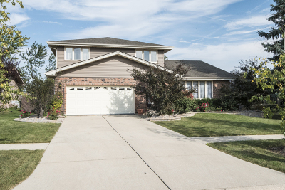 Homer Glen Single Family Home For Sale: 15613 Badger Lane