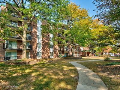 Naperville Condo/Townhouse For Sale: 5s040 Pebblewood Lane #W507