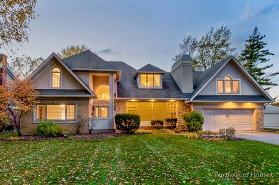 Glen Ellyn Single Family Home For Sale: 250 North Park Boulevard
