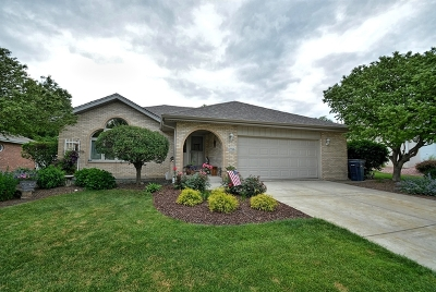 Orland Park Single Family Home For Sale: 17516 Mayher Drive