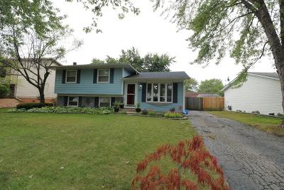 Bolingbrook Single Family Home For Sale: 155 Thackeray Drive