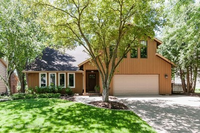 Naperville Single Family Home For Sale: 809 Huntleigh Drive