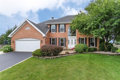 Bartlett IL Single Family Home Contingent: $429,000
