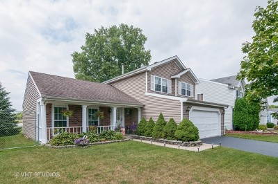 Carol Stream Single Family Home For Sale: 904 Waco Drive
