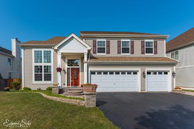 Huntley Single Family Home For Sale: 10435 Aldridge Drive