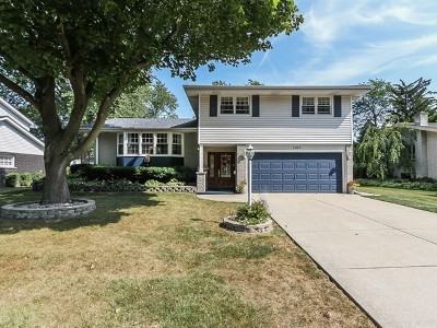Mount Prospect Single Family Home Contingent: 1005 North Newberry Lane