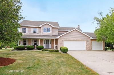 New Lenox Single Family Home For Sale: 2920 Abbington Drive