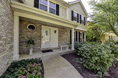 Woodridge Single Family Home For Sale: 1213 Chesham Court