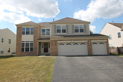 Bolingbrook Single Family Home For Sale: 1572 Woodland Lane