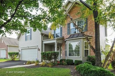 Aurora Single Family Home Contingent: 2257 Wildhorse Drive