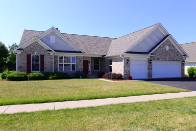 Huntley Single Family Home For Sale: 12805 Muir Drive
