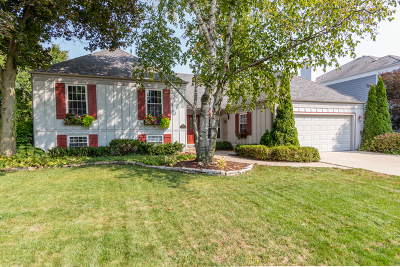 Wheaton Single Family Home For Sale: 2069 Spring Green Drive