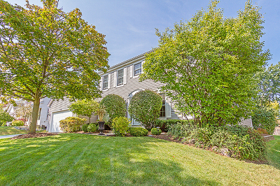 Schaumburg Single Family Home Contingent: 1700 Green River Drive