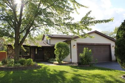 Hoffman Estates Single Family Home For Sale: 1759 Dogwood Drive
