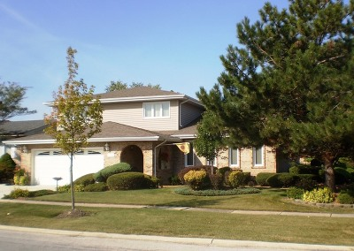Tinley Park Single Family Home Contingent: 17800 Linden Drive