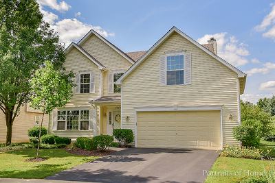 Naperville Single Family Home For Sale: 3439 Parliament Lane