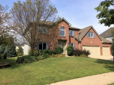 Naperville Single Family Home For Sale: 3023 Tall Grass Drive