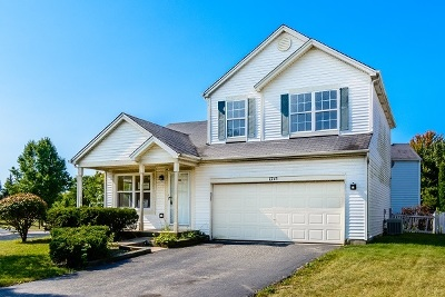 Plainfield Single Family Home For Sale: 1715 Emerald Pointe Circle