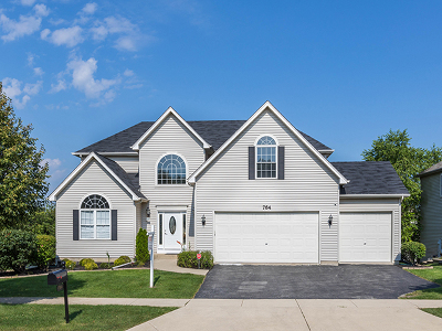 South Elgin Single Family Home For Sale: 764 East Thornwood Drive