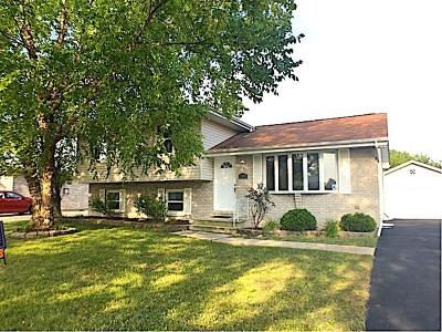 Plainfield Single Family Home For Sale: 2506 Labrecque Drive