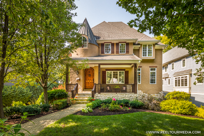 Naperville Single Family Home For Sale: 463 South Columbia Street