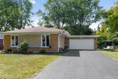 Mount Prospect Single Family Home For Sale: 604 South Edward Street