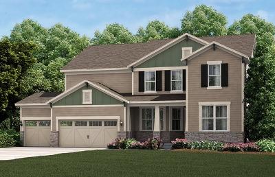 South Elgin Single Family Home For Sale: 794 Hamilton Drive