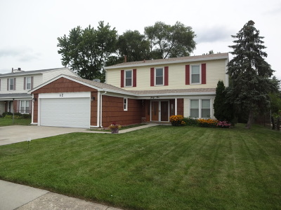 Glendale Heights Single Family Home For Sale: 62 Hesterman Drive