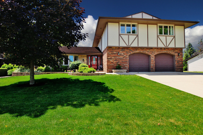 Schaumburg Single Family Home For Sale: 204 Wyoma Lane