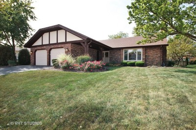 Frankfort Single Family Home For Sale: 226 Larch Road